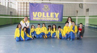 ASD VOLLEY MONTECORVINO