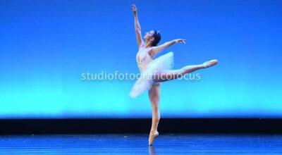 BALLET PROFESSIONAL DANCE